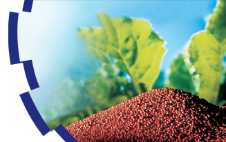 LIGNOCEL® Seed coating