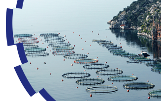 ARBOCEL for Fish Farming